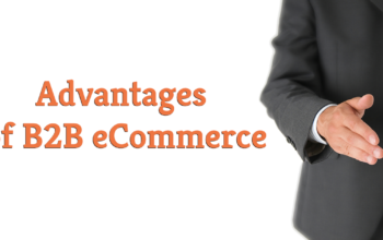 Advantages of B2B E-commerce
